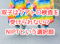 【体験談】双子はクアトロ検査を受けるのが難しい!?我が家がNIPTにした理由