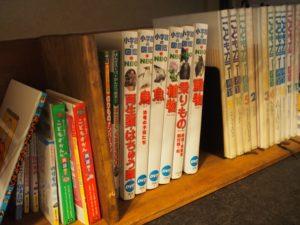 1歳児に図鑑を買ってみたら…本棚がお気に入りの場所になった