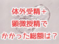 高度不妊治療(体外受精+顕微授精)で第一子を授かるまでにかかった費用は146万円