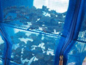 干網で乾燥させた生姜
