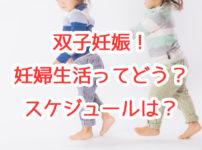 【妊婦生活記録】双子妊娠生活のスケジュール。妊娠生活中にやったことなどまとめ